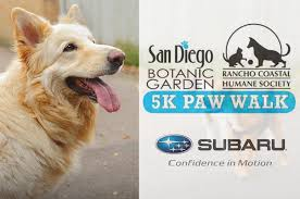 Image result for The 5K Paw Walk in the Garden