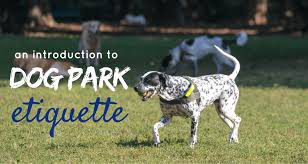 Image result for Dog Park Etiquette