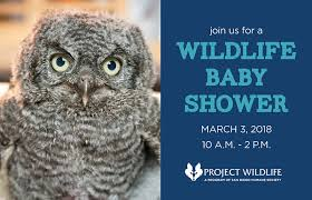 Image result for Project Wildlife Baby Shower