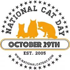 Image result for national cat day