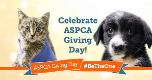 Image result for aspca giving day 2017