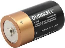Duracell D LR20 Battery - 2 Pack - MN1300B2Z - BatteryJunction.com
